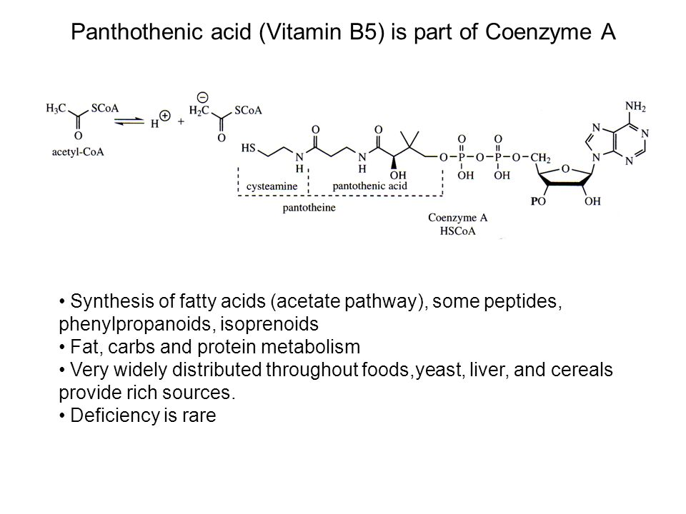Vitamin B6 (pyridoxamine, pyridoxal phosphate & pyridoxine) Catalyzes transaminations & decarboxylations of amino acids Metabolism  energy In plants, used in biosynthesis of phenylpropanoids from amino acids Meat, salmon, nuts, potatoes, bananas, and cereals Can be lost through cooking, though deficiency usually caused by poor absorption Deficiency causes nervous disorders, skin rash, muscle weakness, anemia pyridoxine