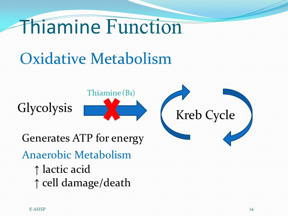 Thiamine Function © AMSP 14 Thiamine (B1) Glycolysis Generates ATP for energy Oxidative Metabolism Kreb Cycle ↑ lactic acid ↑ cell damage/death Anaerobic Metabolism