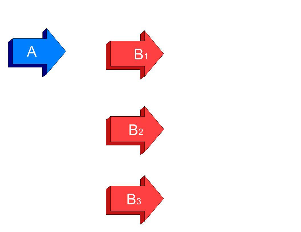A B1B1 B2B2 B3B3