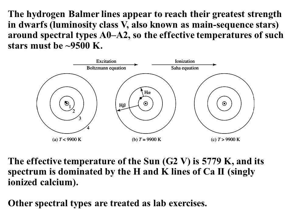 The hydrogen Balmer lines appear to reach their greatest strength in dwarfs (luminosity class V, also known as main-sequence stars) around spectral types A0–A2, so the effective temperatures of such stars must be ~9500 K.