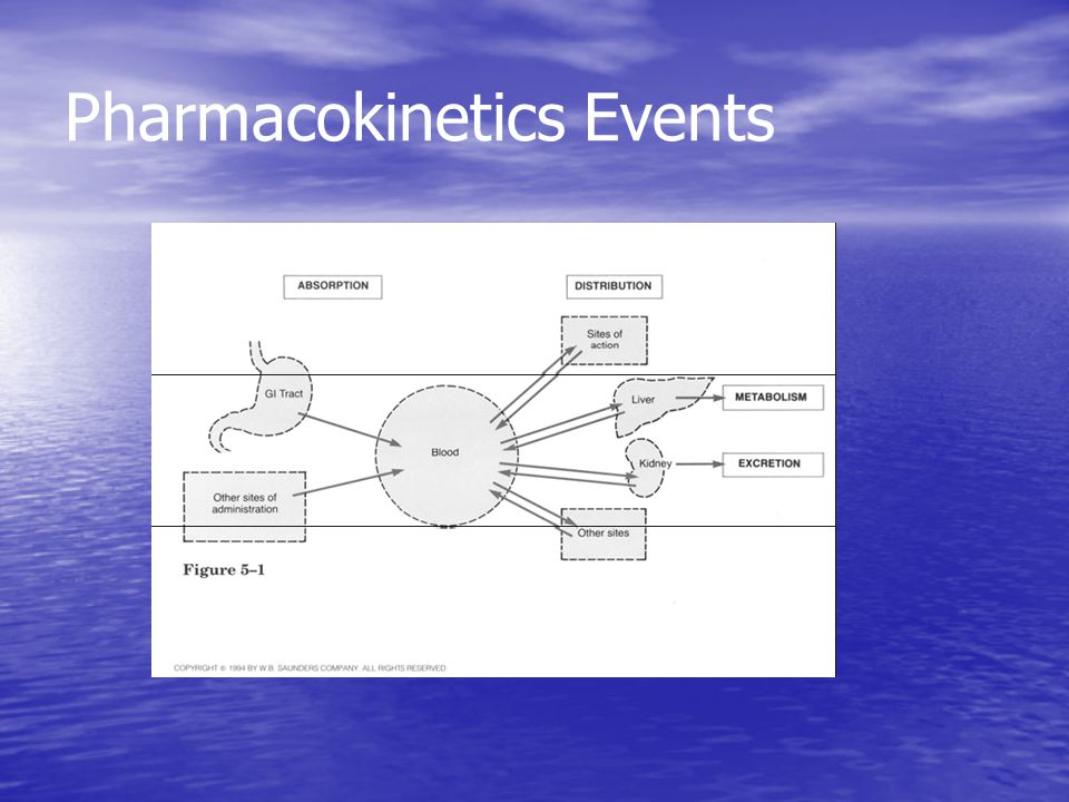 Pharmacokinetics Events