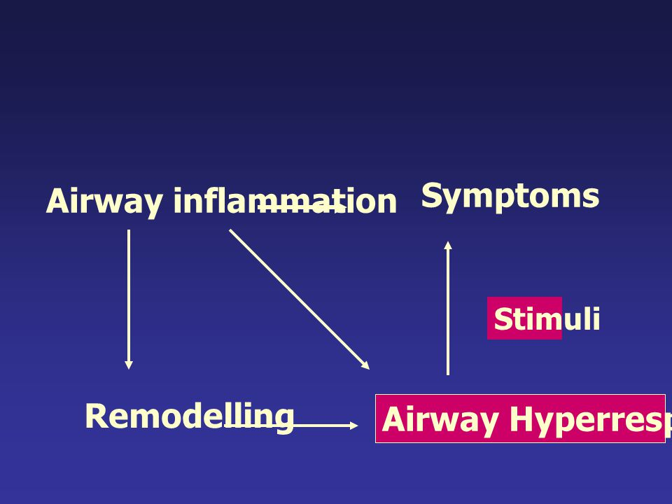 Airway inflammation Airway Hyperresponsiveness Stimuli Symptoms Remodelling