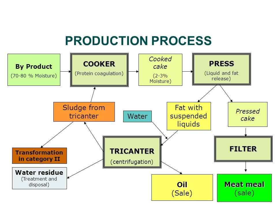 PRODUCTION PROCESS By Product (70-80 % Moisture) COOKER (Protein coagulation) Cooked cake (2-3% Moisture) PRESS (Liquid and fat release) FILTER Pressed cake Meat meal Meat meal (sale) Fat with suspended liquids Water Sludge from tricanter Water residue (Treatment and disposal) TRICANTER (centrifugation) Transformation in category II Oil Oil (Sale)