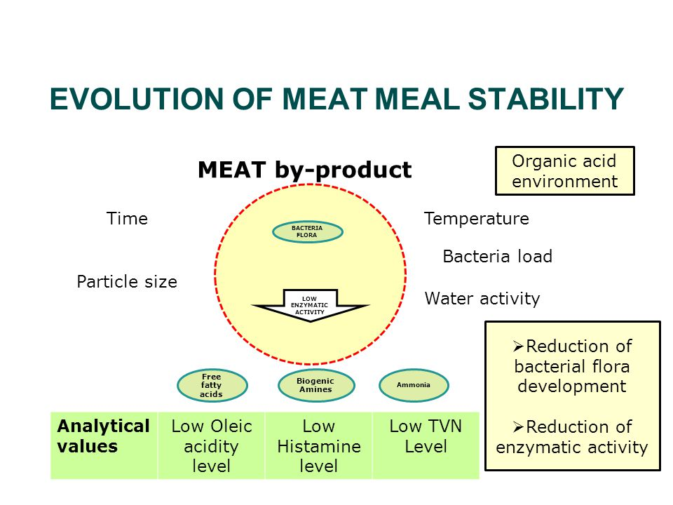 MEAT by-product Time Particle size Temperature Bacteria load Free fatty acids Biogenic Amines Ammonia BACTERIA FLORA LOW ENZYMATIC ACTIVITY Organic acid environment  Reduction of bacterial flora development  Reduction of enzymatic activity Analytical values Low Oleic acidity level Low Histamine level Low TVN Level EVOLUTION OF MEAT MEAL STABILITY Water activity