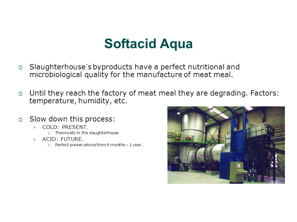 Softacid Aqua  Slaughterhouse´s byproducts have a perfect nutritional and microbiological quality for the manufacture of meat meal.