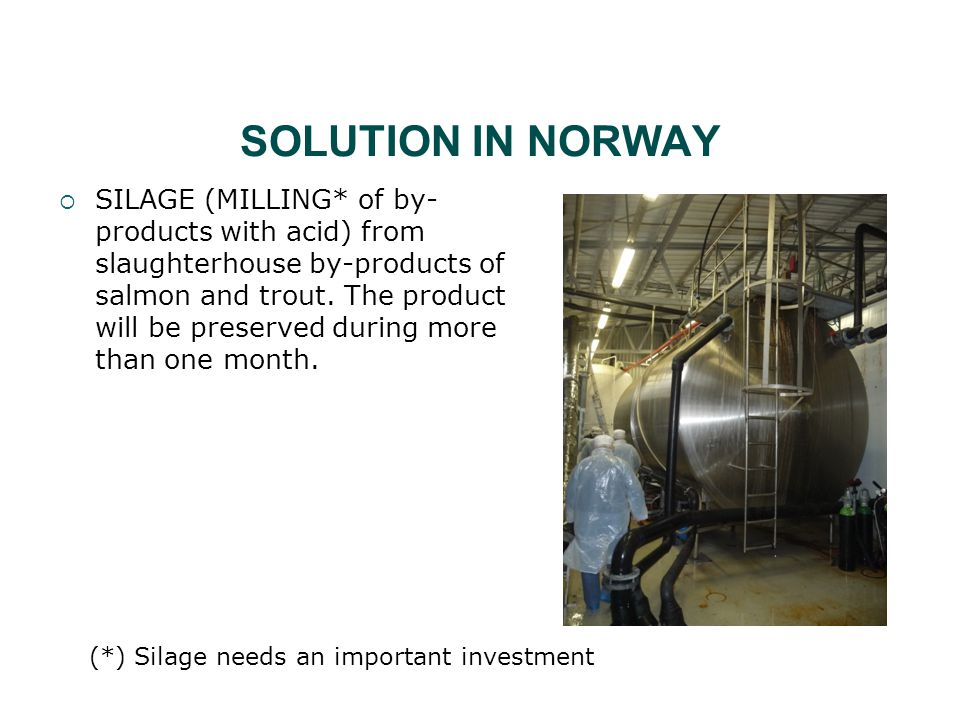 SOLUTION IN NORWAY  SILAGE (MILLING* of by- products with acid) from slaughterhouse by-products of salmon and trout.