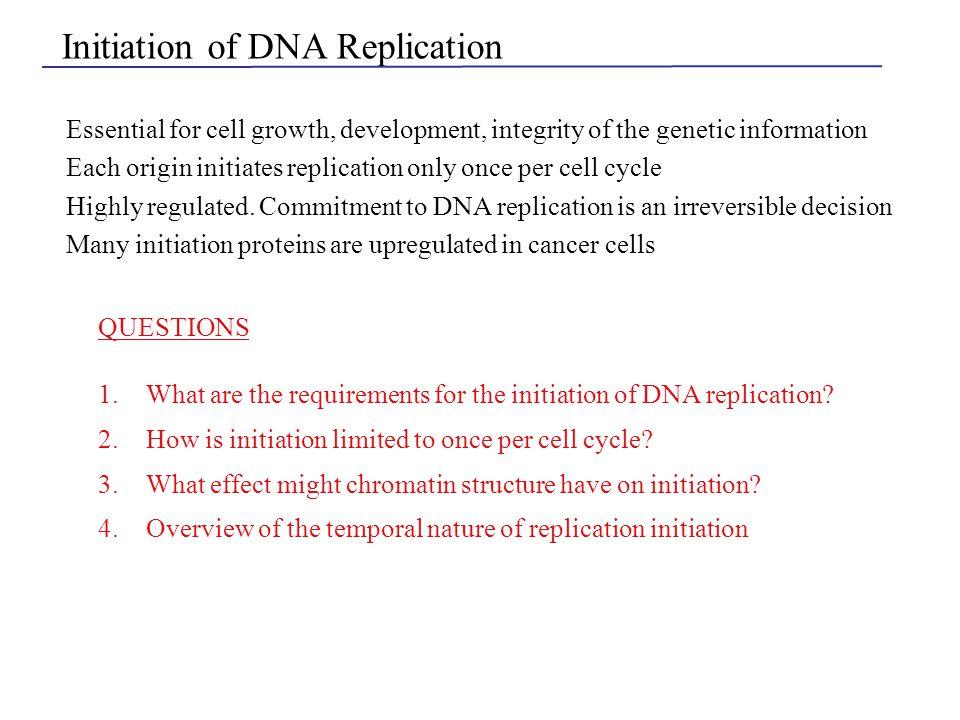 MCM A B1 B2 ORC Cdc45p Origin unwinding occurs GINS