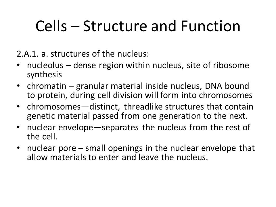 Cells – Structure and Function 2.A.1. a.