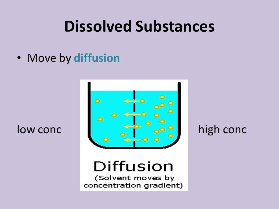 Dissolved Substances Move by diffusion low conchigh conc