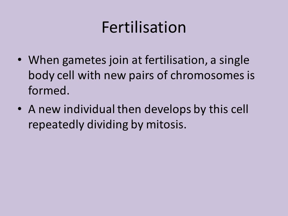 Fertilisation When gametes join at fertilisation, a single body cell with new pairs of chromosomes is formed. A new individual then develops by this c
