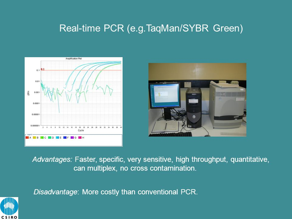 Real-time PCR (e.g.TaqMan/SYBR Green) Advantages: Faster, specific, very sensitive, high throughput, quantitative, can multiplex, no cross contamination.