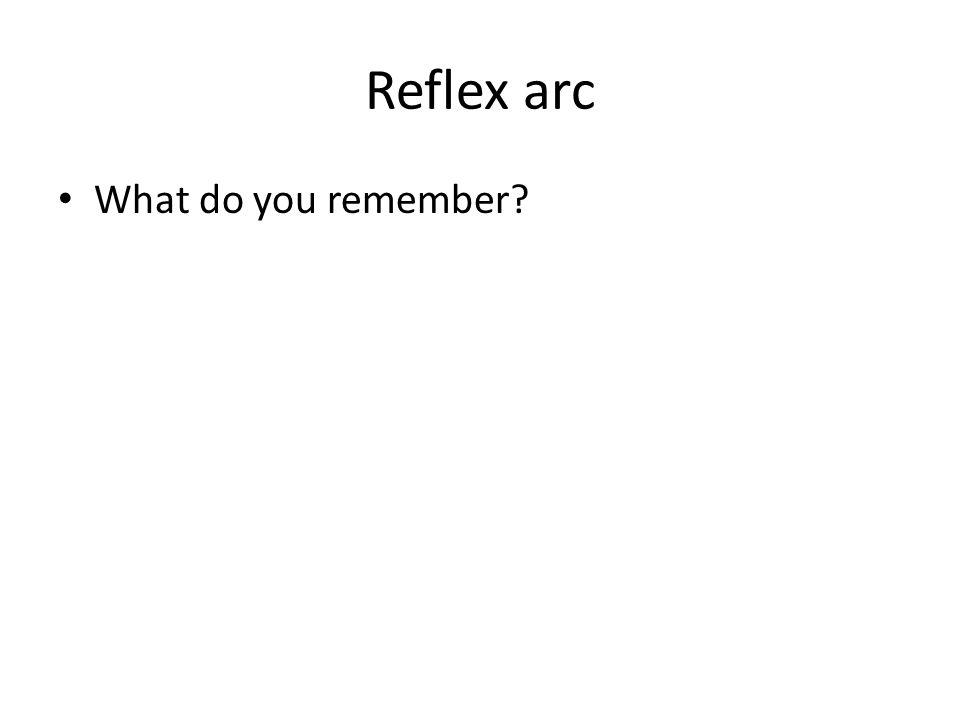 Reflex arc What do you remember?