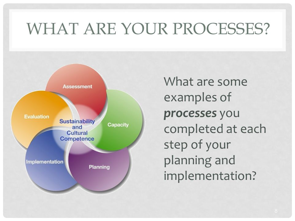 WHAT ARE YOUR PROCESSES? 8 What are some examples of processes you completed at each step of your planning and implementation?