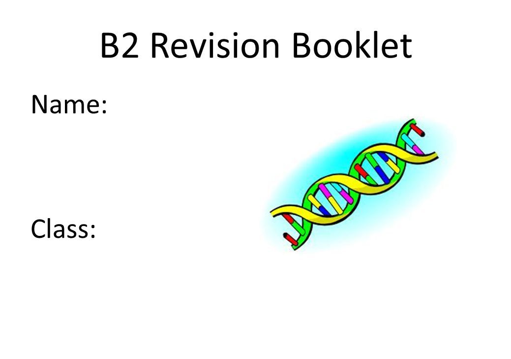 B2 REVISION – CHAPTER 1 – CELLS, TISSUES & ORGANS KEY WORDS: Nucleus Cytoplasm Cell membrane Mitochondria Ribosome Chloroplast Vacuole Specialised Diffusion Concentration gradient Multicellular Tissue Organ Organ system ASSESSMENT: What do plant cells have that animal cells do not.