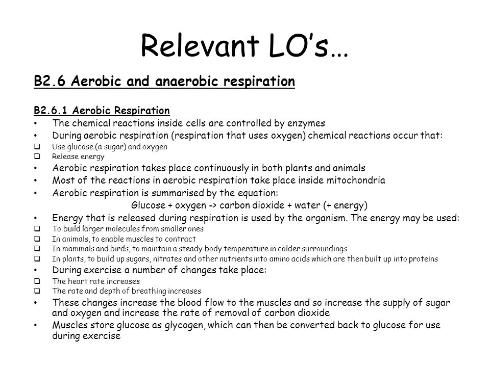 Relevant LO's B2.6.2 Anaerobic Respiration During exercise, if insufficient oxygen is reaching the muscles they use anaerobic respiration to obtain energy Anaerobic respiration is the incomplete breakdown of glucose and produces lactic acid **As the breakdown of glucose is incomplete, much less energy is released than during aerobic respiration.