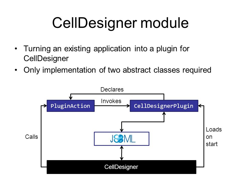 CellDesigner module Turning an existing application into a plugin for CellDesigner Only implementation of two abstract classes required PluginActionCellDesignerPlugin CellDesigner Loads on start Declares Invokes Calls