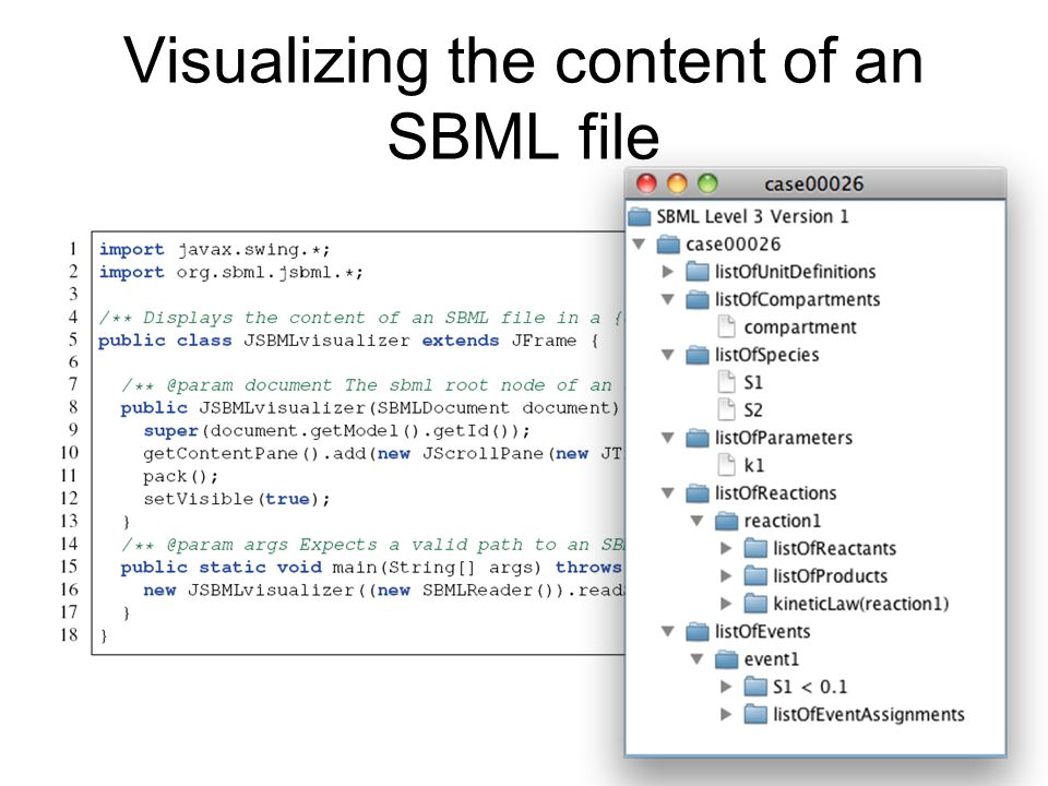 Visualizing the content of an SBML file