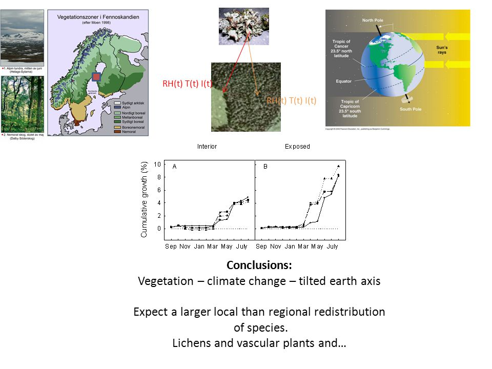 Conclusions: Vegetation – climate change – tilted earth axis Expect a larger local than regional redistribution of species.