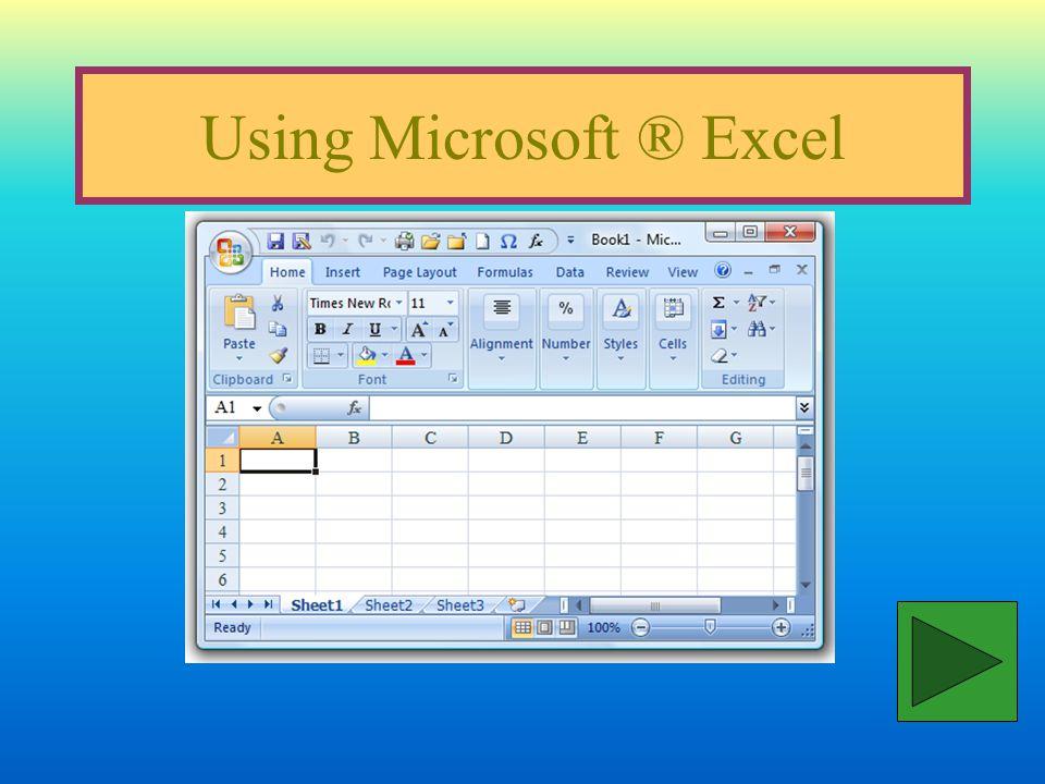 Using Microsoft ® Excel