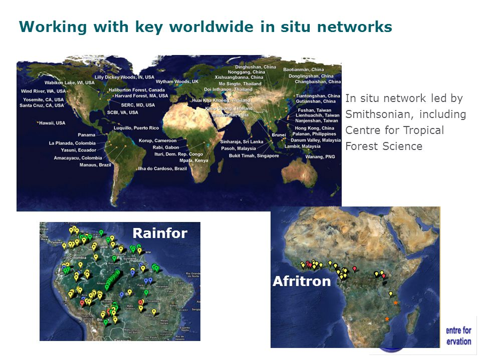 In situ network led by Smithsonian, including Centre for Tropical Forest Science Afritron Rainfor Working with key worldwide in situ networks