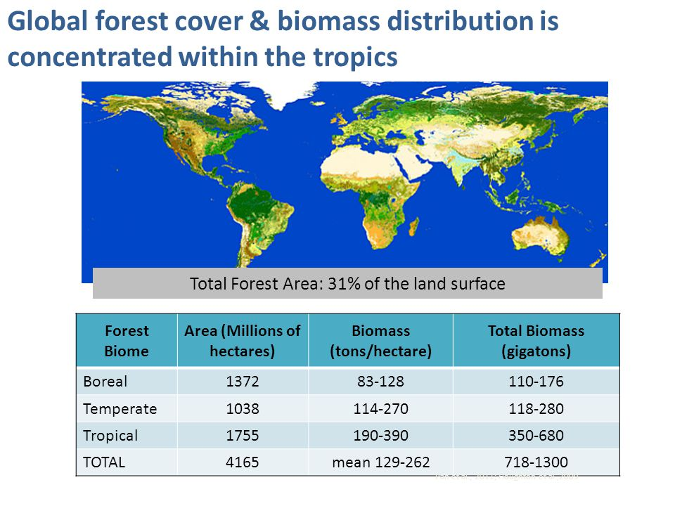 Global forest cover & biomass distribution is concentrated within the tropics Total Forest Area: 31% of the land surface Forest Biome Area (Millions o