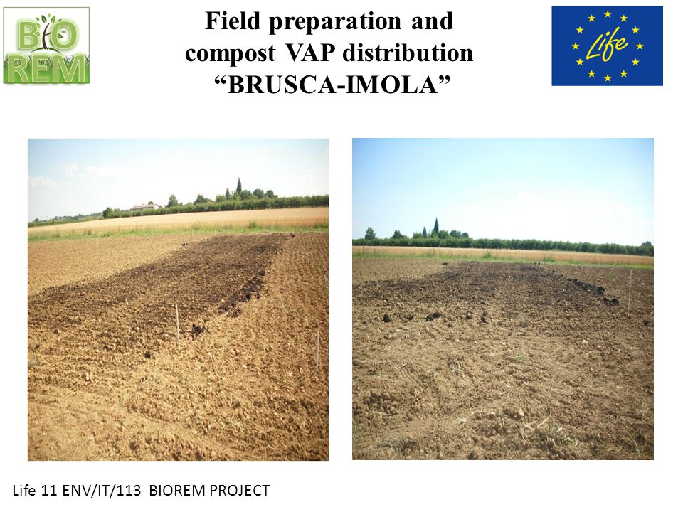 Life 11 ENV/IT/113 BIOREM PROJECT Field preparation and compost VAP distribution BRUSCA-IMOLA