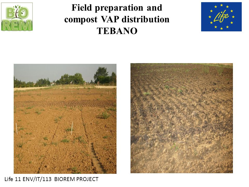 Life 11 ENV/IT/113 BIOREM PROJECT Field preparation and compost VAP distribution TEBANO