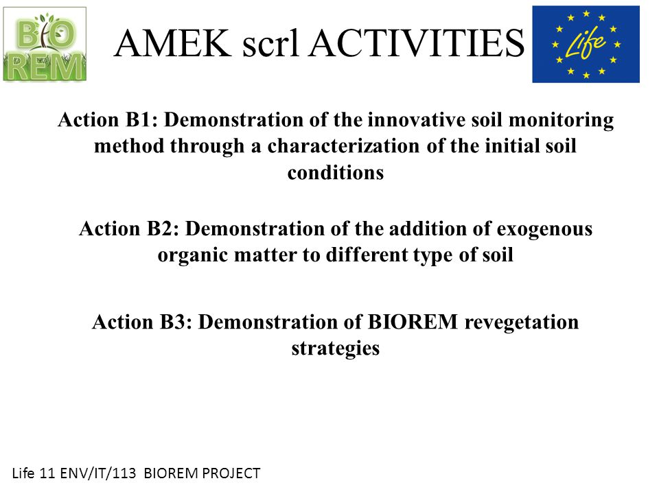 Life 11 ENV/IT/113 BIOREM PROJECT AMEK scrl ACTIVITIES Action B4: Demonstration of the innovative biochemical monitoring methodology – in progress Action C1 e C2: Monitoring of the integrated soil restoration and monitoring activities and Monitoring and assessment of environmental impact – in progress
