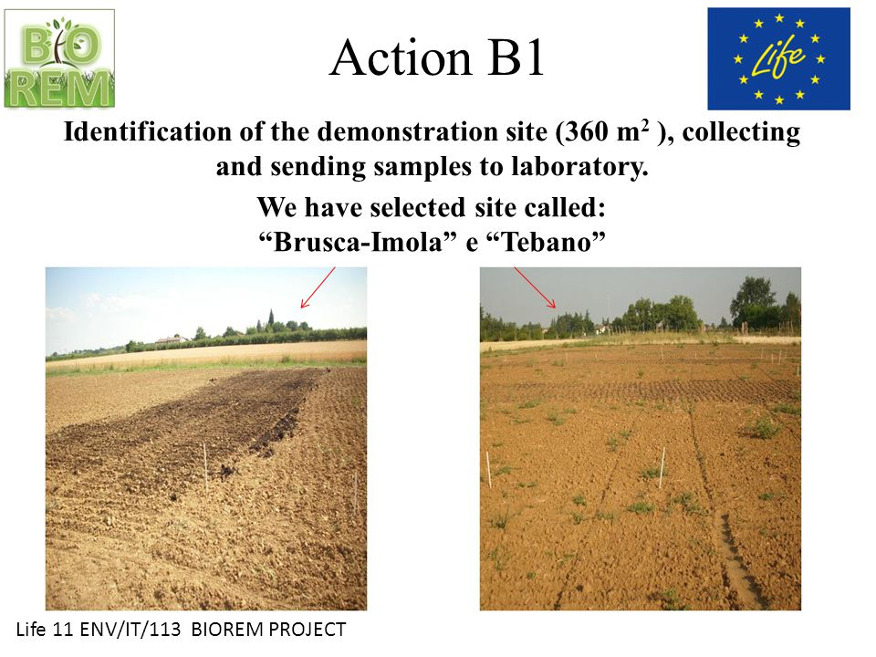 Life 11 ENV/IT/113 BIOREM PROJECT Action B1 Brusca-Imola Site: Altitude: 62 m above sea level Rainfall: 600-800 mm Structure: clayey- silty Organic matter: medium - low Preceding Crops: 2012: Durum wheat 2011: Set -aside 2010: potato 2009: melon