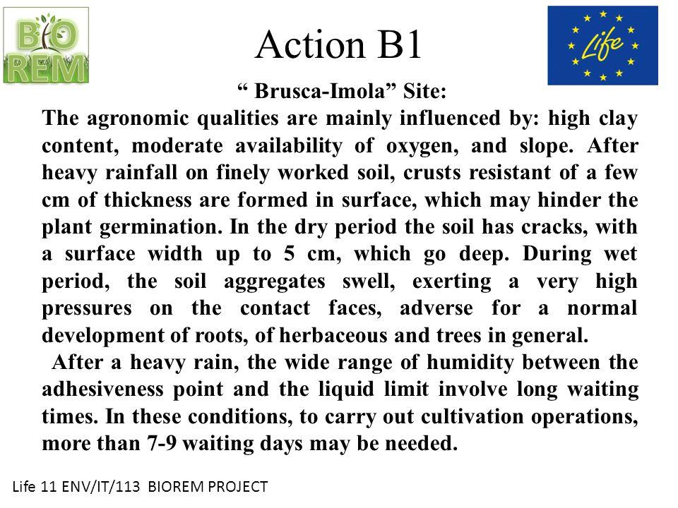 Life 11 ENV/IT/113 BIOREM PROJECT Field preparation and compost VAP distribution TEBANO
