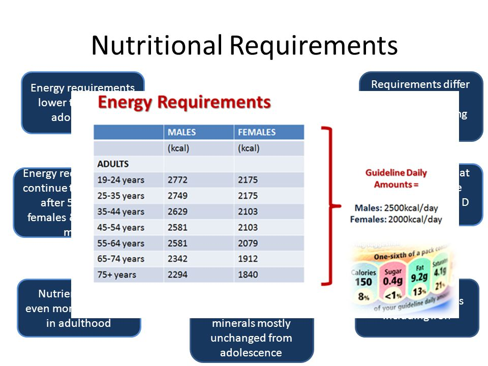 Nutritional Requirements ADULTS 19 + years Energy requirements continue to decrease after 50 yrs in females & 60 yrs in men Nutrient density even more