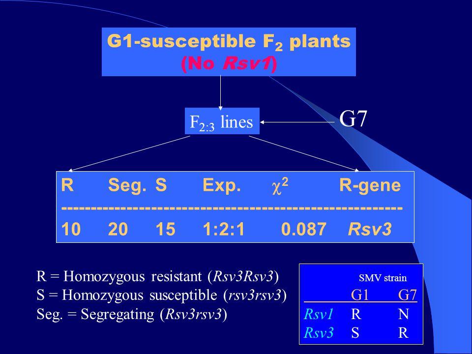 G1-susceptible F 2 plants (No Rsv1) SMV strain G1G7 Rsv1RN Rsv3SR RSeg.S Exp.