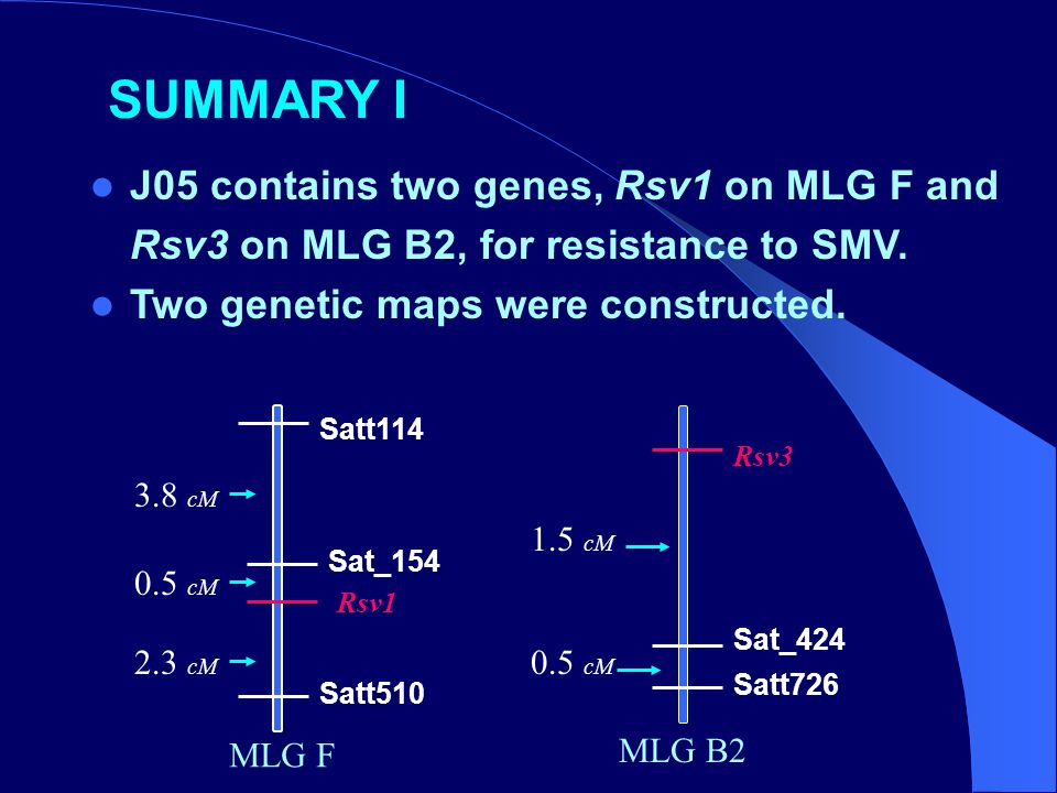 SUMMARY I J05 contains two genes, Rsv1 on MLG F and Rsv3 on MLG B2, for resistance to SMV. Two genetic maps were constructed. Rsv3 Sat_424 Satt726 Rsv