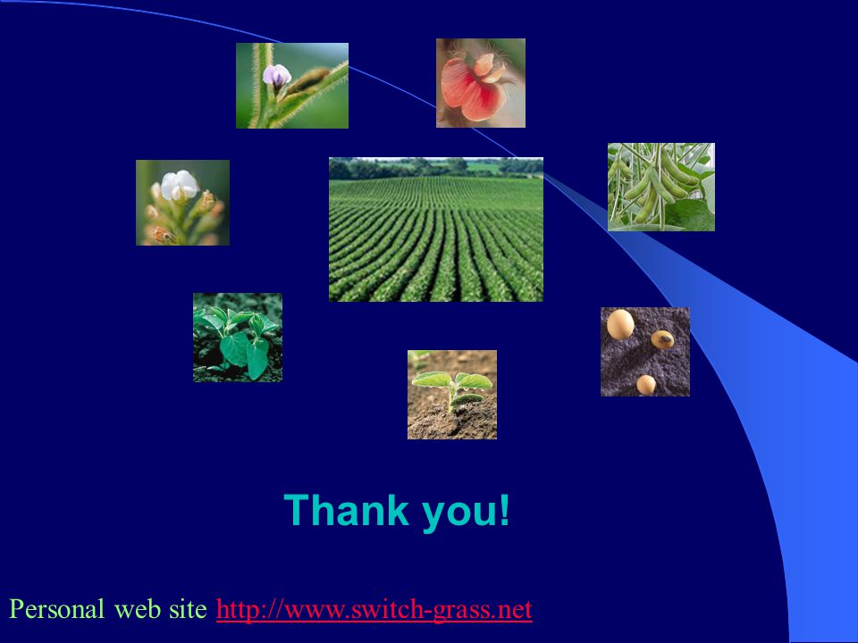 Thank you! Personal web site http://www.switch-grass.nethttp://www.switch-grass.net