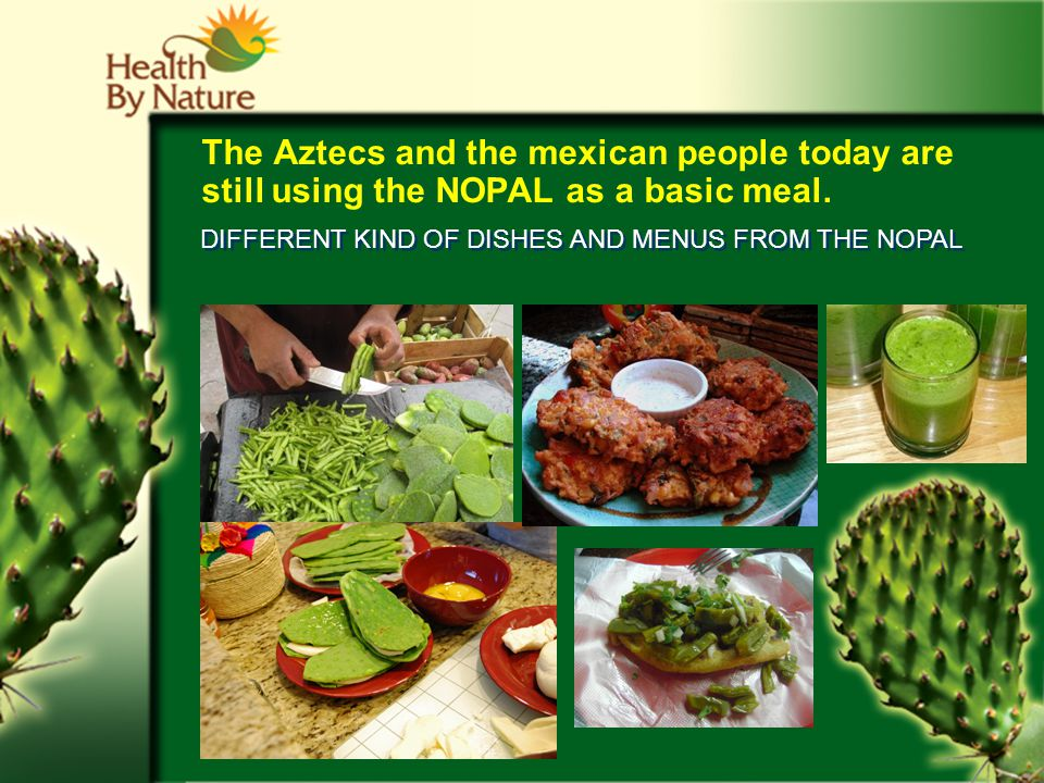 The Aztecs and the mexican people today are still using the NOPAL as a basic meal.
