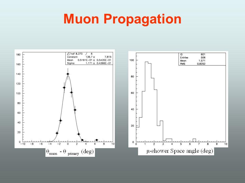 Muon Propagation