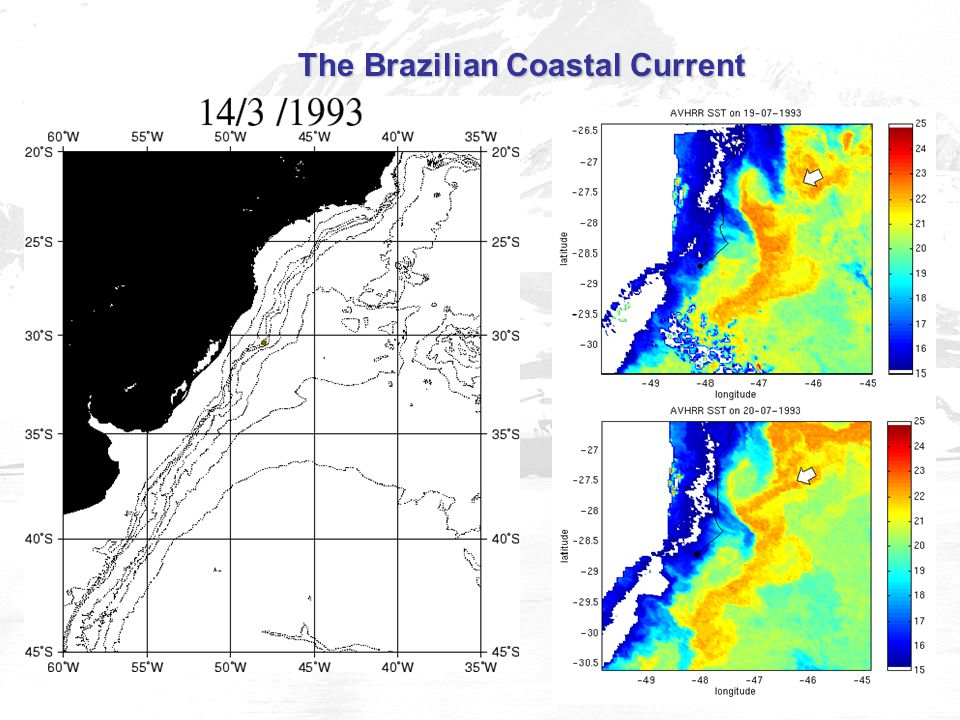The Brazilian Coastal Current