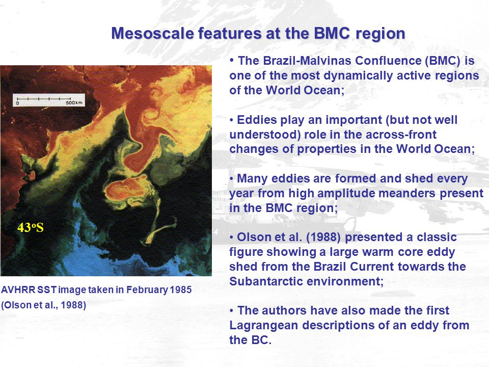 AVHRR SST image taken in February 1985 (Olson et al., 1988) The Brazil-Malvinas Confluence (BMC) is one of the most dynamically active regions of the World Ocean; Eddies play an important (but not well understood) role in the across-front changes of properties in the World Ocean; Many eddies are formed and shed every year from high amplitude meanders present in the BMC region; Olson et al.