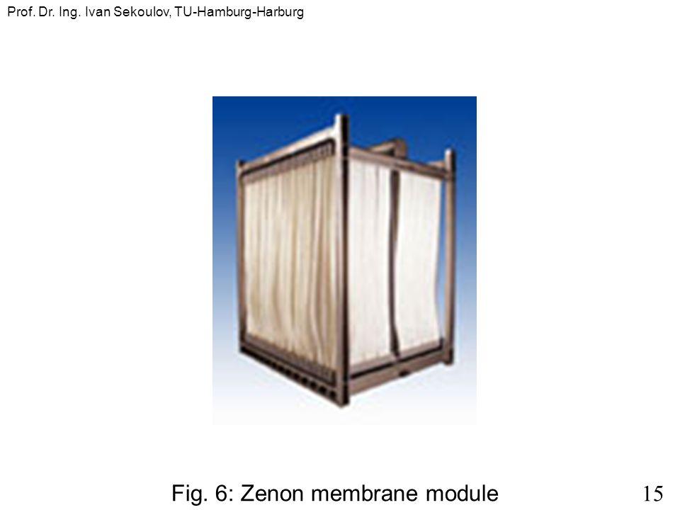 15 Prof. Dr. Ing. Ivan Sekoulov, TU-Hamburg-Harburg Fig. 6: Zenon membrane module