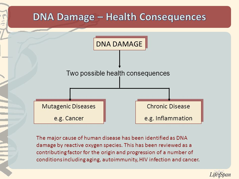 DNA DAMAGE Mutagenic Diseases e.g. Cancer Mutagenic Diseases e.g.