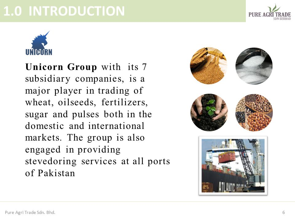 6 1.0 INTRODUCTION Unicorn Group with its 7 subsidiary companies, is a major player in trading of wheat, oilseeds, fertilizers, sugar and pulses both