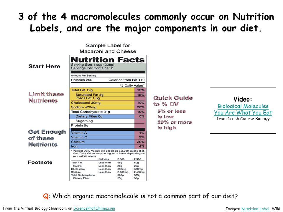3 of the 4 macromolecules commonly occur on Nutrition Labels, and are the major components in our diet.