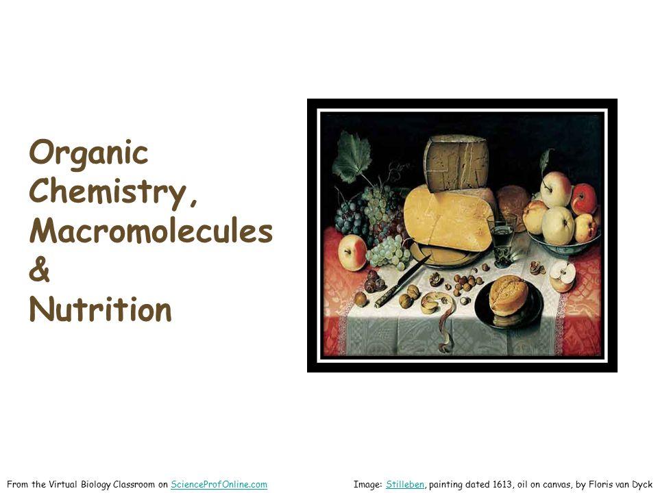 Organic Chemistry, Macromolecules & Nutrition From the Virtual Biology Classroom on ScienceProfOnline.comScienceProfOnline.com Image: Stilleben, painting dated 1613, oil on canvas, by Floris van DyckStilleben