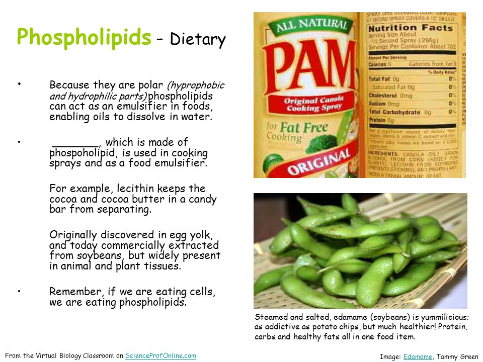Phospholipids - Dietary Because they are polar (hyprophobic and hydrophilic parts) phospholipids can act as an emulsifier in foods, enabling oils to dissolve in water.