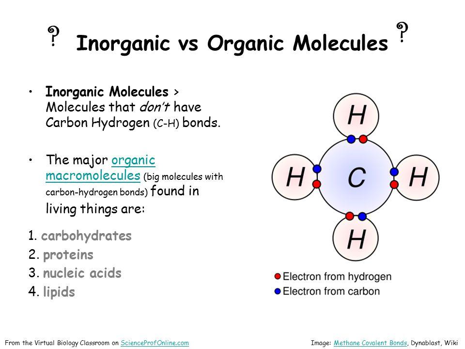 Inorganic vs Organic Molecules Inorganic Molecules > Molecules that don't have Carbon Hydrogen (C-H) bonds. The major organic macromolecules (big mole