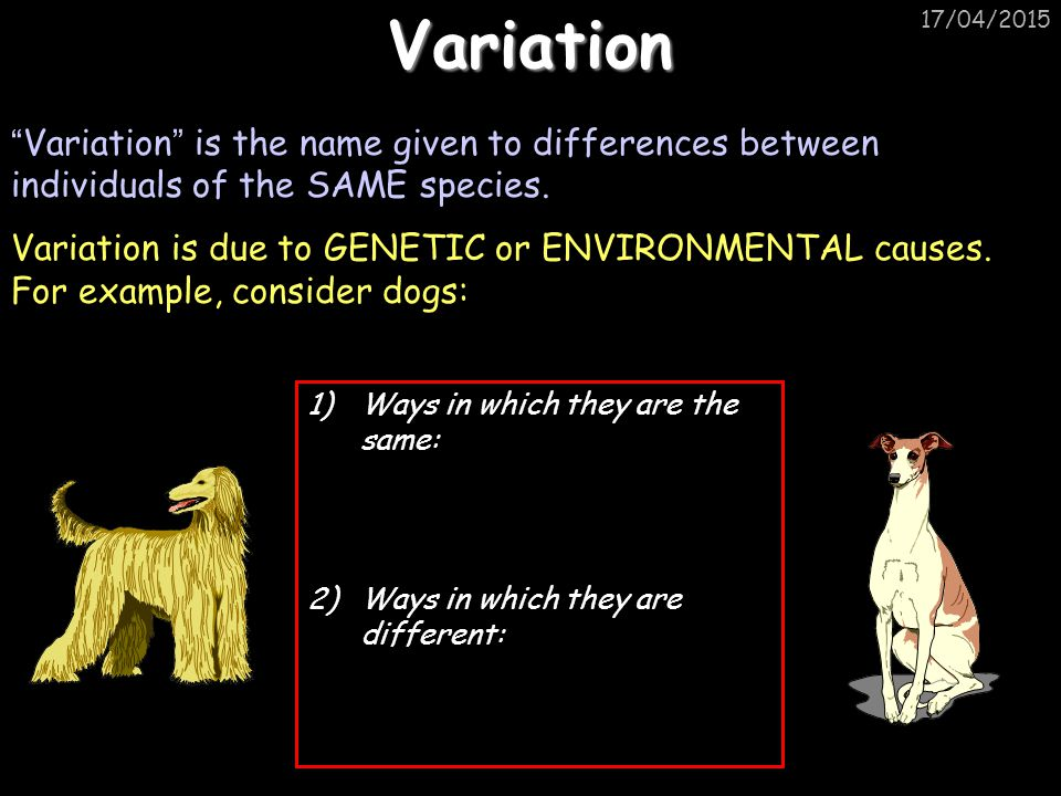 """17/04/2015Variation """" Variation """" is the name given to differences between individuals of the SAME species. Variation is due to GENETIC or ENVIRONMENT"""