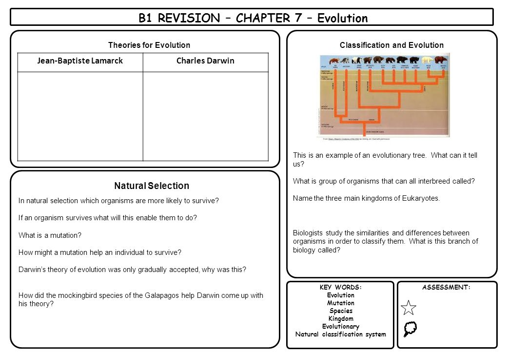 KEY WORDS: Evolution Mutation Species Kingdom Evolutionary Natural classification system ASSESSMENT: B1 REVISION – CHAPTER 7 – Evolution Theories for