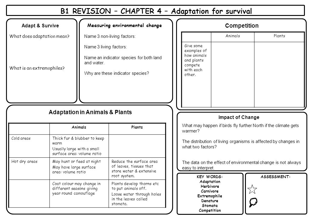 KEY WORDS: Adaptation Herbivore Carnivore Extremophile Denature Stomata Competition ASSESSMENT: Adapt & Survive B1 REVISION – CHAPTER 4 – Adaptation f