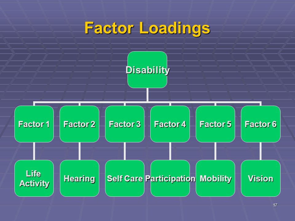 17 Factor Loadings Disability Factor 1 LifeActivity Factor 2 Hearing Factor 3 Self Care Factor 4 Participation Factor 5 Mobility Factor 6 Vision