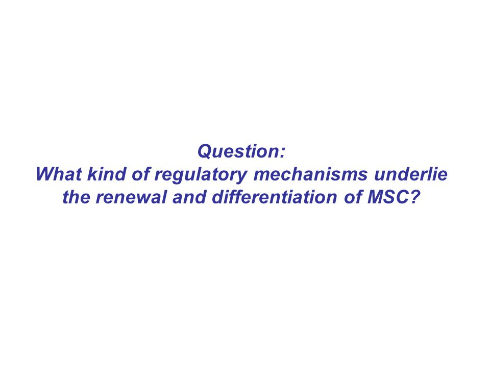 Question: What kind of regulatory mechanisms underlie the renewal and differentiation of MSC?